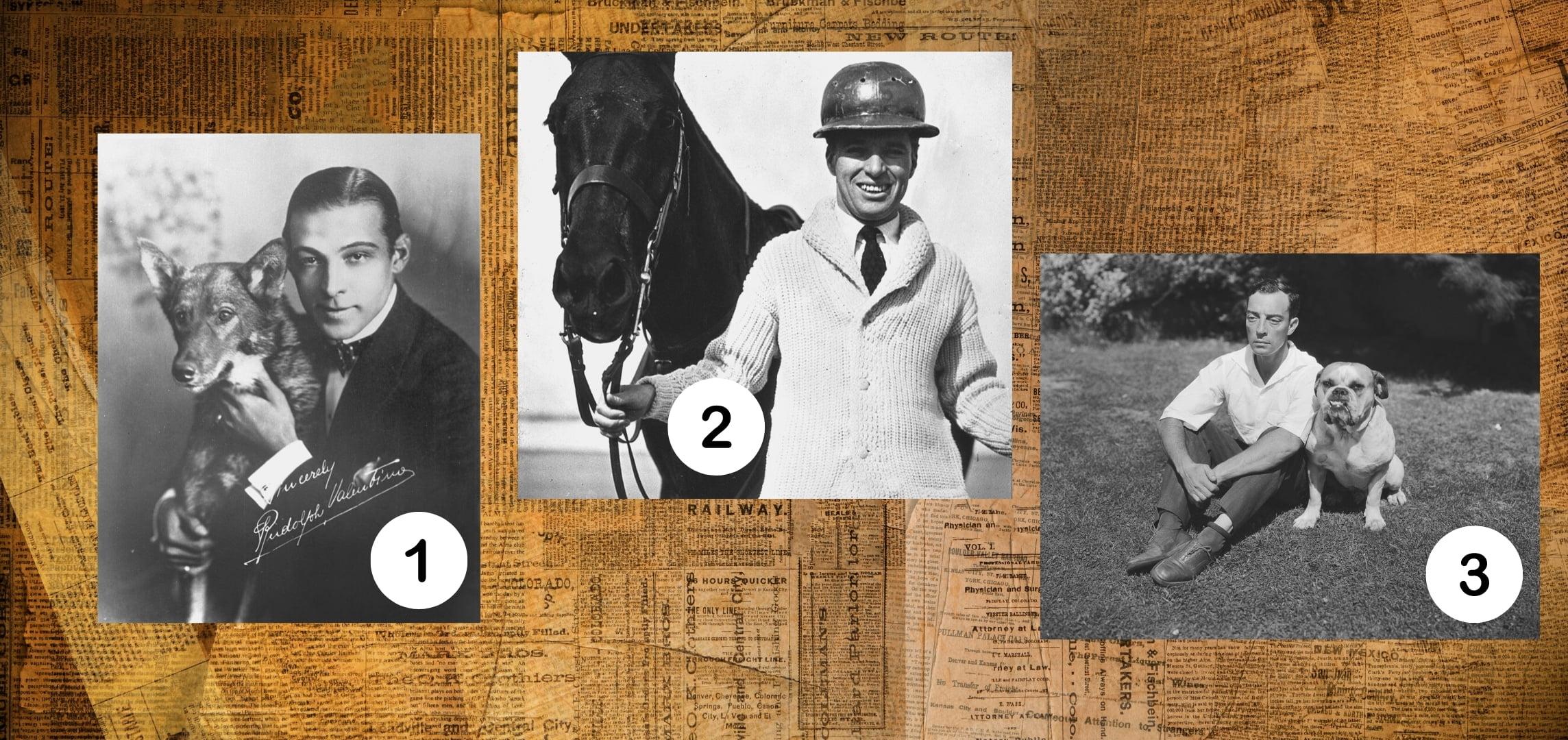 Numer 1 togładko zaczesany brunet zpsem. Numer 2 touśmiechnięty mężczyzna wswetrze trzymający zauzdę konia. Numer trzy tomężczyzana opociągłej twarzy iwielkich oczach.